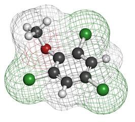 Trichloroanisole (TCA) cork taint molecule.