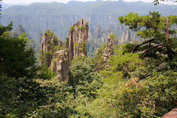 Zhangjiajie ancient mountains. China.