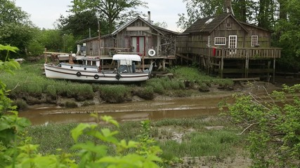 Low Tide, Finn Slough, Richmond