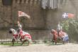 Les Chevaliers du Puy du Fou - 67108433