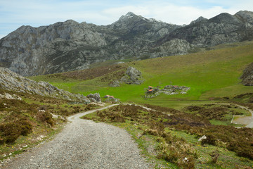 Dirt Road in the Cantabrian Mountains (Picos de Europa), Spain.