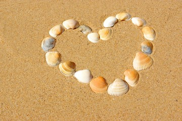 Heart frame made of sea shells