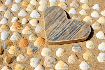 Wooden Heart and Sea Shells