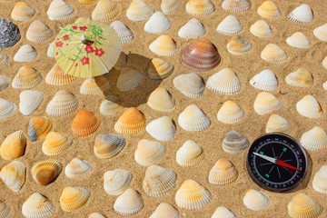 Compass, Umbrella and Seashells
