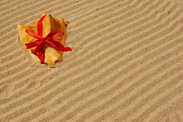 Sea Shell with red ribbon and gold sand