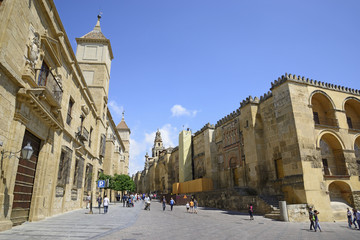 Episcopal Palace and Cathedral of Cordoba, Andalucía, Spain.