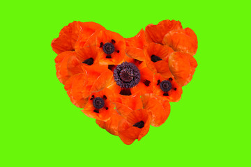 Heart of poppies