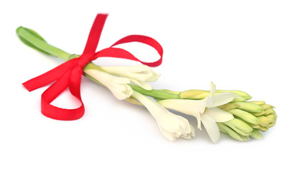 Tuberose with red ribbon