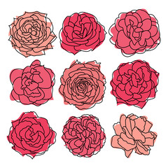 set of 9 roses