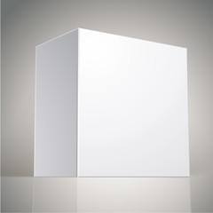 Vector blank box, template for your package design, put your ima