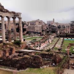 Forum view