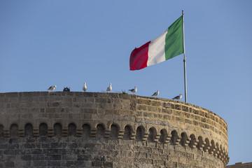 Seagulls standing near Italian flag