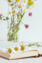 Chamomile flowers in open book