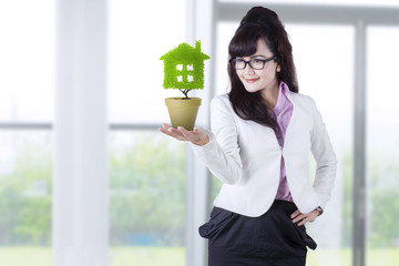 Businesswoman holds plant in pot 1