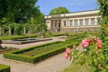 Stuttgart, Schloss Rosenstein, Rosengarten (Juli 2014)