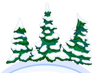 Cartoon image of three conifers on white-blue snowdrifts.