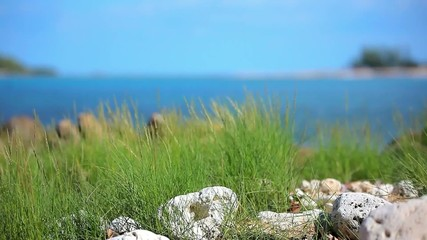 Grass on sand dune, stones and  azure sea water of rocks beach