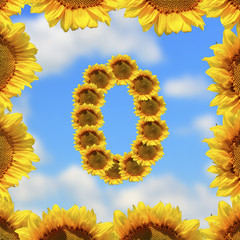 Sunflower number zero