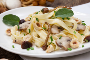 Wild Mushrooms Pasta