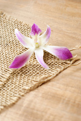 burlap, sackcloth textured background with orchid