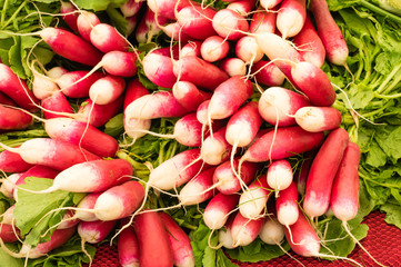 Radishes on display at the farmer's market