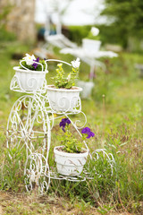 Flowers in decorative flower pots, outdoors