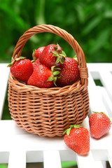 Ripe sweet strawberries in wicker basket on table in garden