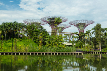 SINGAPORE - MAY 12: Gardens by the Bay on Mar 12, 2014 in Singap