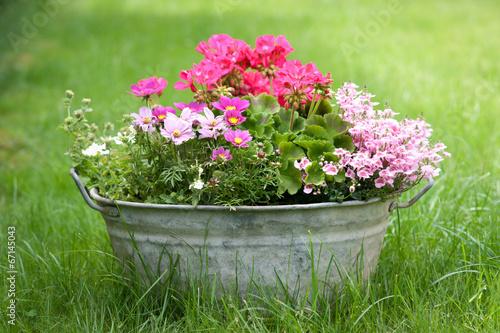 Blechwanne mit Blumen