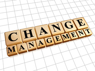 change management in golden cubes