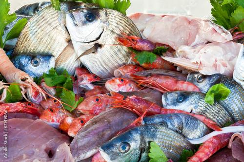 pesce fresco in pescheria