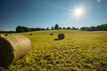 Terrain Agricole Jura FRANCE
