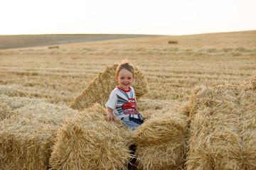 Little boy sitting on the stubble.