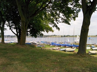 Rutland Water yachts under trees