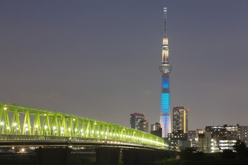 Tokyo sky tree and Tokyo city view at night time