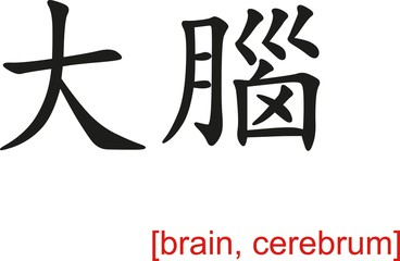 Chinese Sign for brain, cerebrum