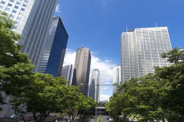 快晴青空と緑の 新宿高層ビル群 イメージ 728