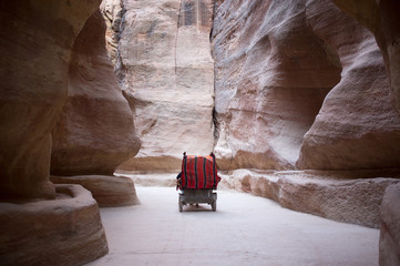 The Siq leading to Petra, Jordan