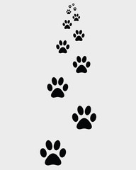 Black prints of paws of dogs, vector illustration