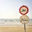 beach signal