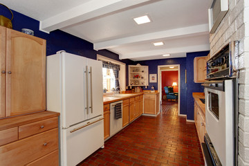 Contrast colors kitchen room with brick floor