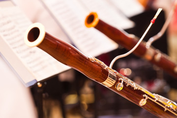 Fragment bassoons in a symphony orchestra