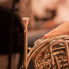 French horn fragment