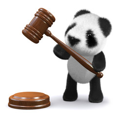3d Panda bear with gavel