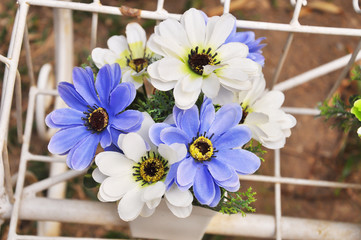 Blue and white plastic flowers