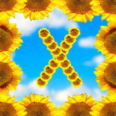 Sunflower letter X