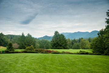 Lawn in Western North Carolina