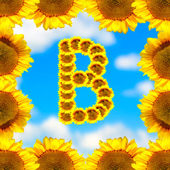Sunflower letter B