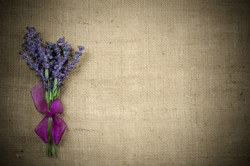 Bouquet of of lavender
