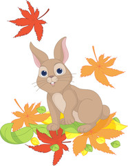 Hare looks at the falling leaves
